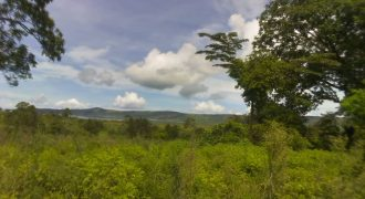 Plots for sale after Nangunga at shs 6,000,000