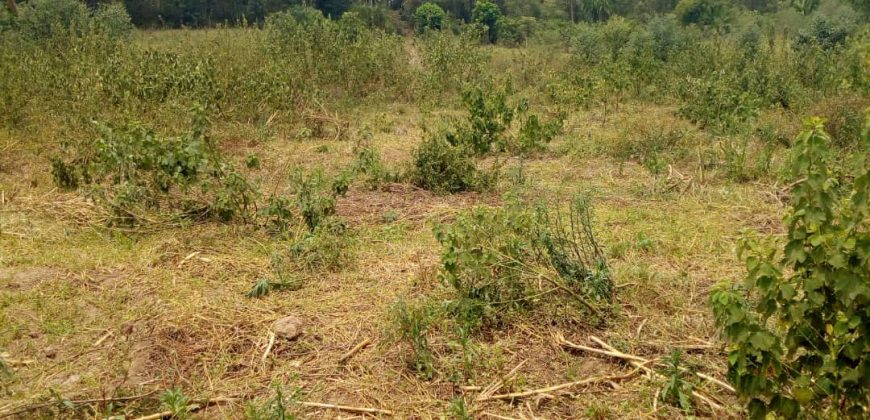 Plots for sale in Nakasaja Gayaza at shs 150,000,000