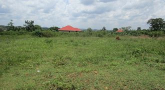 Plots for sale in Busukuma at shs 23,000,000