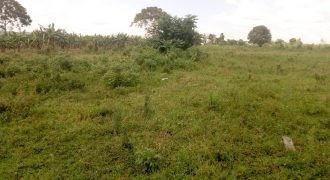 Plots for sale in Kasangati Buwate at shs 60,000,000