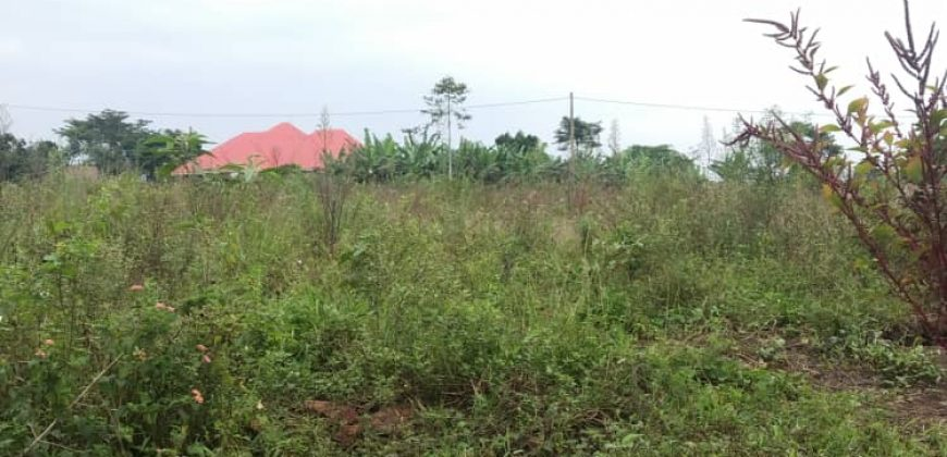 Plots for sale in Bwebajja at shs 300,000,000