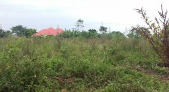 Plots for sale in Manyangwa at shs 120,000,000