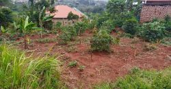 Plots for sale in Bugolobi town center at shs 700,000,000
