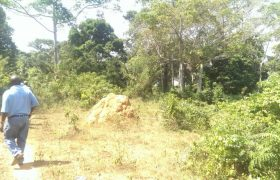 Plots for sale in Kapeeka at shs 5,000,000
