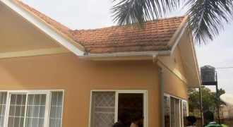 Houses for sale in Muyenga Kironde road at shs 650,000,000