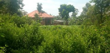 Plots fo sale in Nyamitanga at shs 13,000,000