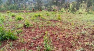 Plots for sale in Bombo Kalule Nakaseke road at shs 8,000,000