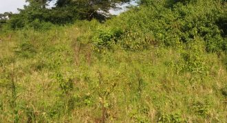 Plots for sale in Mbarara at shs 45,000,000
