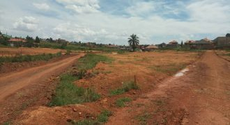 Plots for sale in Nakwero at shs 40,000,000