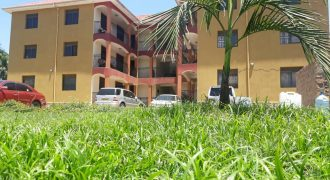 Apartment for rent in Bunga at shs 1,500,000