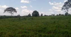 Plots for sale in Bukoto at shs 1,500,000,000