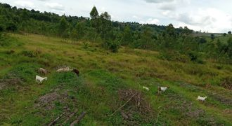 Plots for sale in Nakakono Luwero at shs 5,000,000