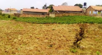 Plots for sale in Namusera Wakiso at shs 10,000,000