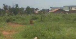 Plots for sale in Munyonyo at shs 450,000,000