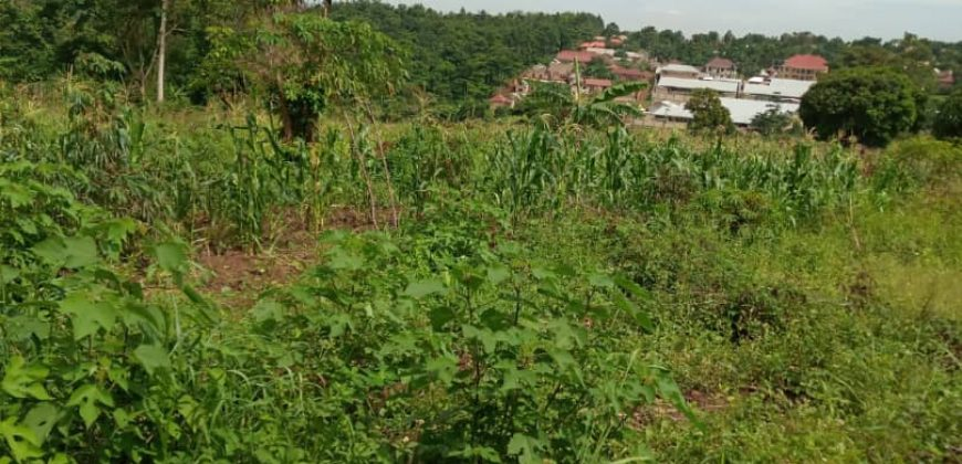 Plots for sale in Mukono at shs 370,000,000