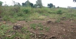 Plots for sale in Kiwenda at shs 50,000,000