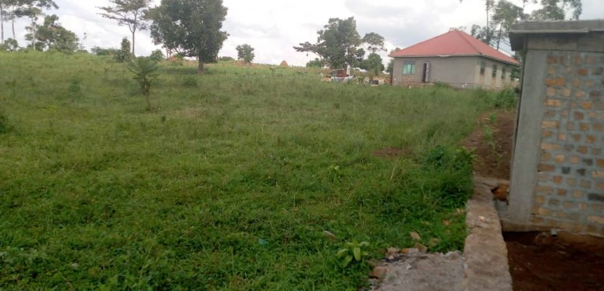 Plots for sale in Muyenga at shs 800,000,000