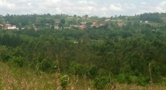 Plots for sale in Kinyogoga Buremezi at shs 1,500,000