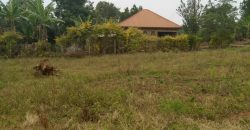 Plots for sale in Kasangati at shs 30,000,000