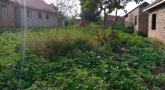 Plots for sale in Bukasa at sh 500,000,000