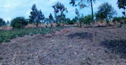 Plots for sale in Mukono town at shs 32,000,000
