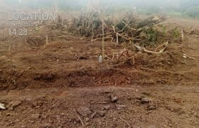 Plots for sale in Katete Kabale at shs 10,000,000
