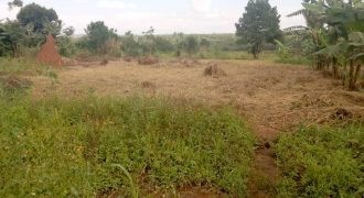 Plots for sale in Nakwero at shs 100,000,000