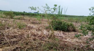 Plots for sale in Nakawuka at shs 50,000,000