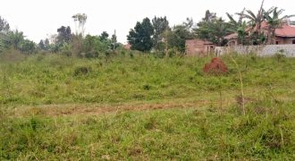 Plots for sale in Kijabijo Gayaza road at shs 175,000,000