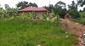 Plots for sale in Bugonga Mugula road at shs 1,200,000,000