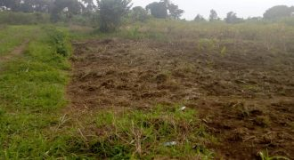 Plots for sale in Bukasa at shs 520,000,000