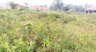 Plots for sale in Byembogo t shs 450,000,000