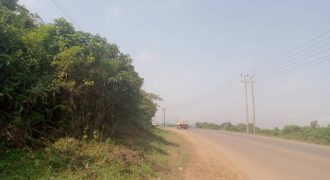 Plots for sale in Kitara Taso at shs 9,000,000