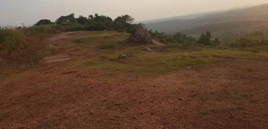 Plots for sale in Kasenyi at shs 250,000,000