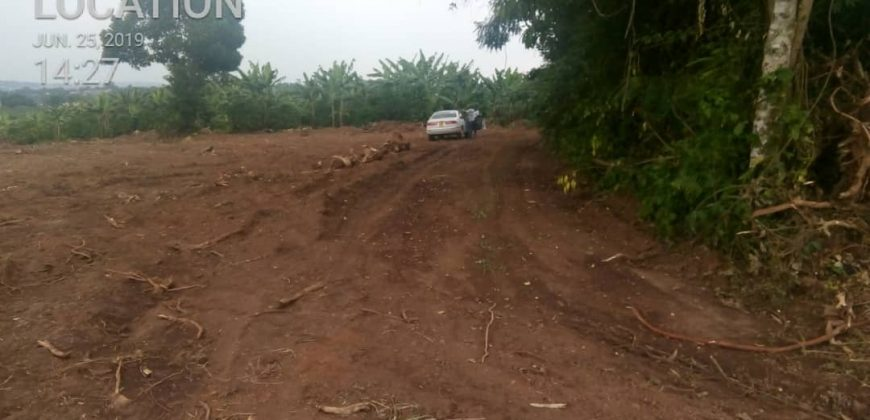 Plots for sale in Kikonge Mitiyana road at shs 27,000,000