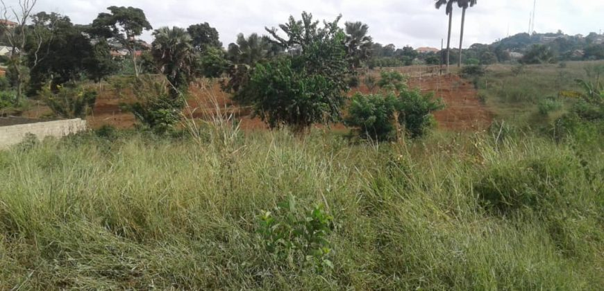 Plots for sale near Victoria University at shs 4,000,000 US dollars