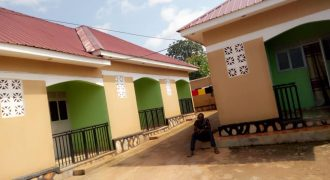 Rental units for rent in Buloba-Forest Park at shs 150,000