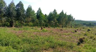 Plots for sale in Gayaza at shs 250,000,000