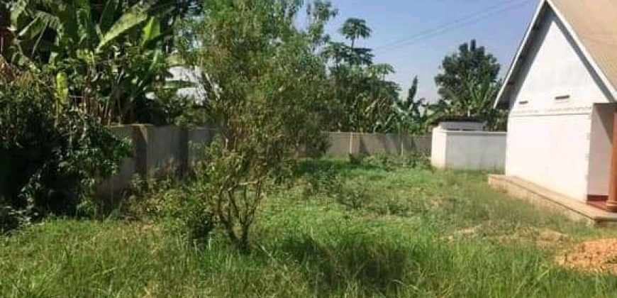 Plots for sale in Bugema at shs 65,000,000
