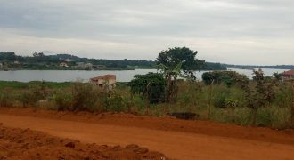 Plots for sale in Masaka at shs 10,000,000