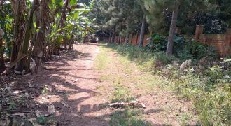 Plots for sale in Kyanja at shs 200,000,000