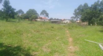 Plots for sale in Mpala Bubuli at shs 60,000,000