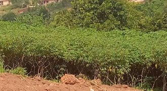 Plots for sale in Nakawuka Mpumude hill at shs 18,000,000