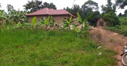 Plots for sale in Watuba at shs 3,000,000