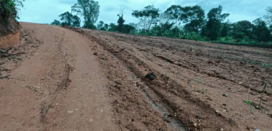 Plots for sale in Bombo at shs 35,000,000
