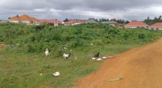 Plots for sale in Bugema at shs 15,00,000