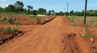 Plots for sale in Katende Masaka road at shs 12,200,000