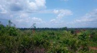 Plots for sale in Migyera Nakasongola at shs 2,500,000,000