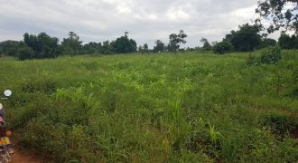 Plots for sale in Bweyogerere at shs 170,000,000