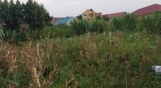 Plots for salein Butabika at shs 500,000,000